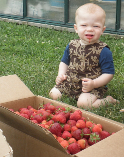 The youngest picker!.